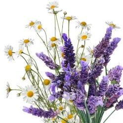 LavenderChamomileHuggies.jpg